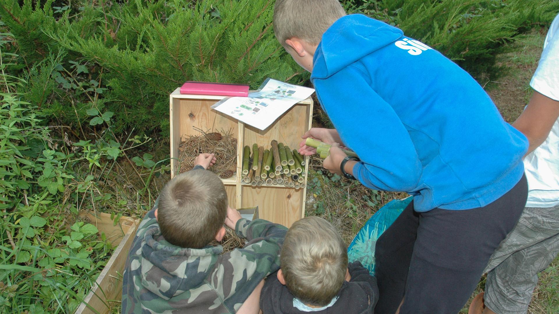 activité enfant camping